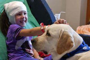 Las mascotas ayudan al bienestar y a la salud mental de las personas