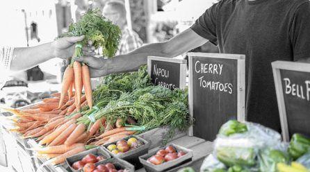 Comida ecológica online, una alternativa saludable